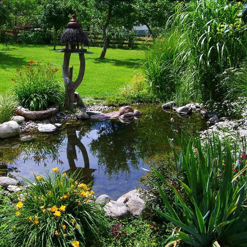 Gartenteich | Immonet
