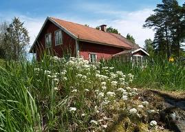 Wohntraum: Ein Haus im Grünen