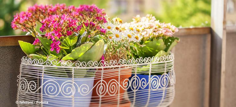 Balkon Frühling Blumen Gärtnern Ideen Holzfliesen Teppich