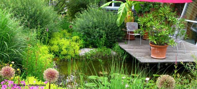 Pflanzen Fr Den Schattigen Balkon ~ Die neueste Innovation der Innenarchitektur und Möbel