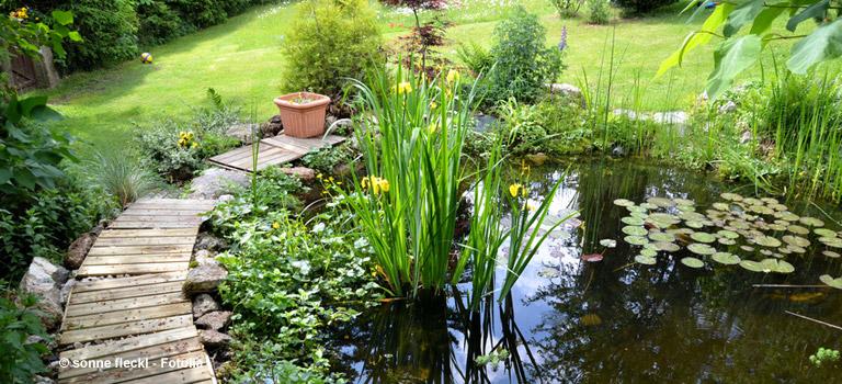 Wasser im garten mit brunnen teich und pool for Garten pool was beachten